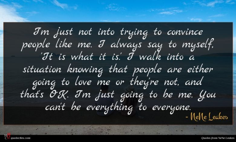 I'm just not into trying to convince people like me. I always say to myself, 'It is what it is.' I walk into a situation knowing that people are either going to love me or they're not, and that's OK. I'm just going to be me. You can't be everything to everyone.