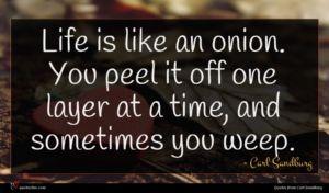 Carl Sandburg quote : Life is like an ...