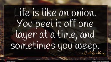 Photo of Carl Sandburg quote : Life is like an …