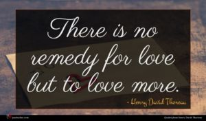Henry David Thoreau quote : There is no remedy ...
