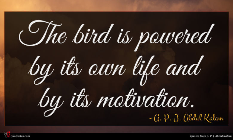 The bird is powered by its own life and by its motivation.