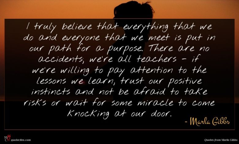 I truly believe that everything that we do and everyone that we meet is put in our path for a purpose. There are no accidents; we're all teachers - if we're willing to pay attention to the lessons we learn, trust our positive instincts and not be afraid to take risks or wait for some miracle to come knocking at our door.