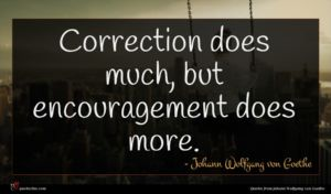 Johann Wolfgang von Goethe quote : Correction does much but ...