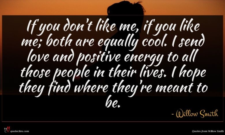 If you don't like me, if you like me; both are equally cool. I send love and positive energy to all those people in their lives. I hope they find where they're meant to be.