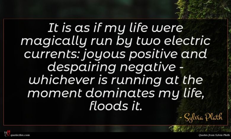 It is as if my life were magically run by two electric currents: joyous positive and despairing negative - whichever is running at the moment dominates my life, floods it.