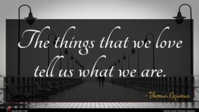 Photo of Thomas Aquinas quote : The things that we …