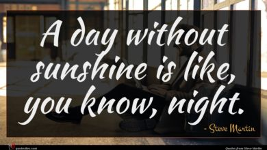 Photo of Steve Martin quote : A day without sunshine …