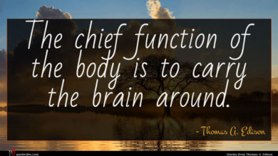 Photo of Thomas A. Edison quote : The chief function of …