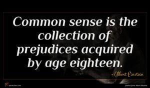 Albert Einstein quote : Common sense is the ...