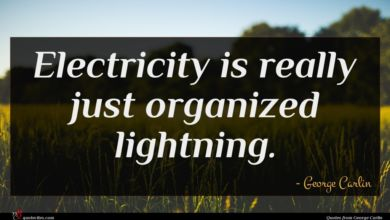 Photo of George Carlin quote : Electricity is really just …