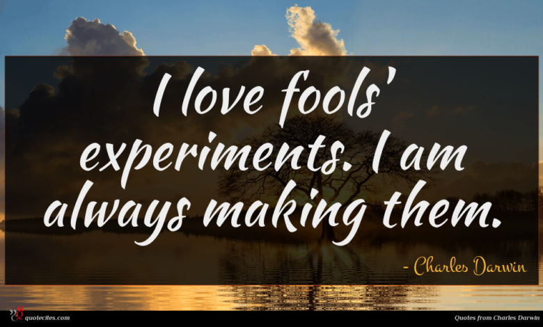 I love fools' experiments. I am always making them.