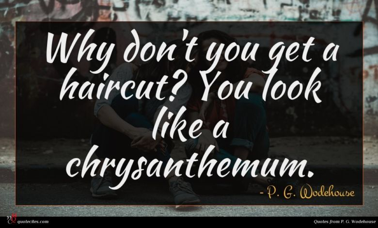 Why don't you get a haircut? You look like a chrysanthemum.