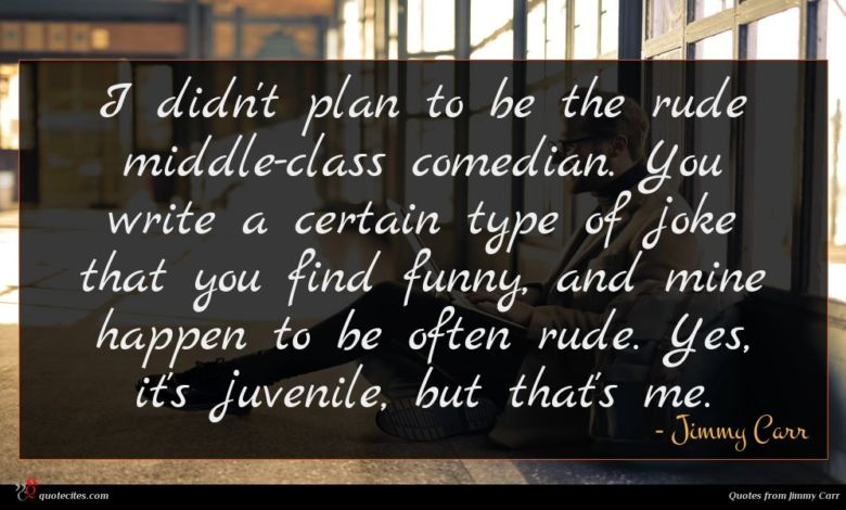 I didn't plan to be the rude middle-class comedian. You write a certain type of joke that you find funny, and mine happen to be often rude. Yes, it's juvenile, but that's me.
