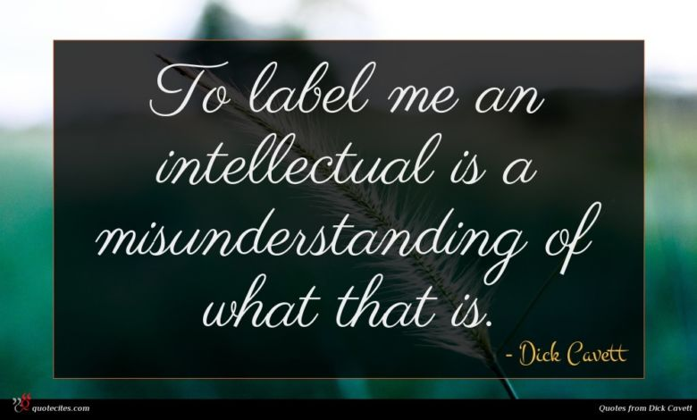 To label me an intellectual is a misunderstanding of what that is.