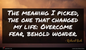 Richard Bach quote : The meaning I picked ...
