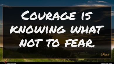 Photo of Plato quote : Courage is knowing what …