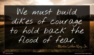Martin Luther King, Jr. quote : We must build dikes ...