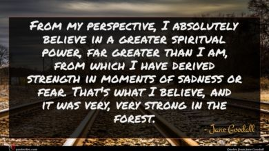 Photo of Jane Goodall quote : From my perspective I …