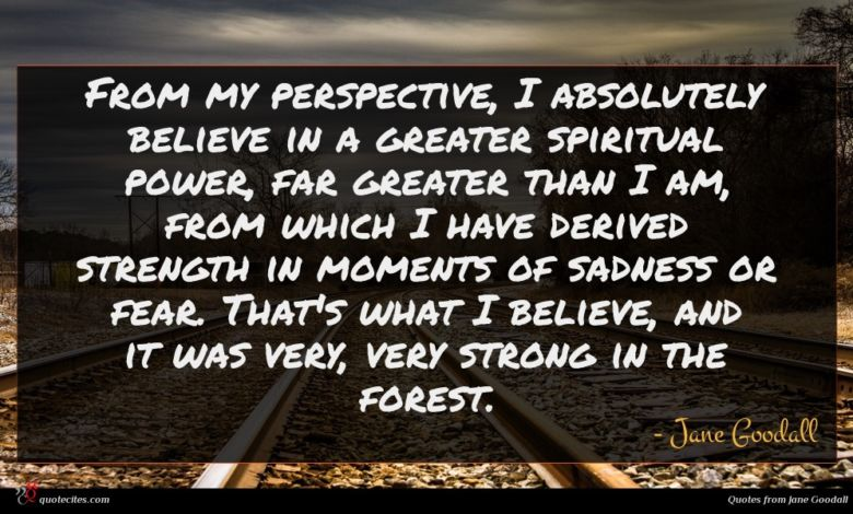 From my perspective, I absolutely believe in a greater spiritual power, far greater than I am, from which I have derived strength in moments of sadness or fear. That's what I believe, and it was very, very strong in the forest.