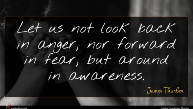 Photo of James Thurber quote : Let us not look …