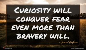 James Stephens quote : Curiosity will conquer fear ...