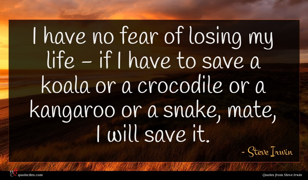 Steve Irwin Quote I Have No Fear