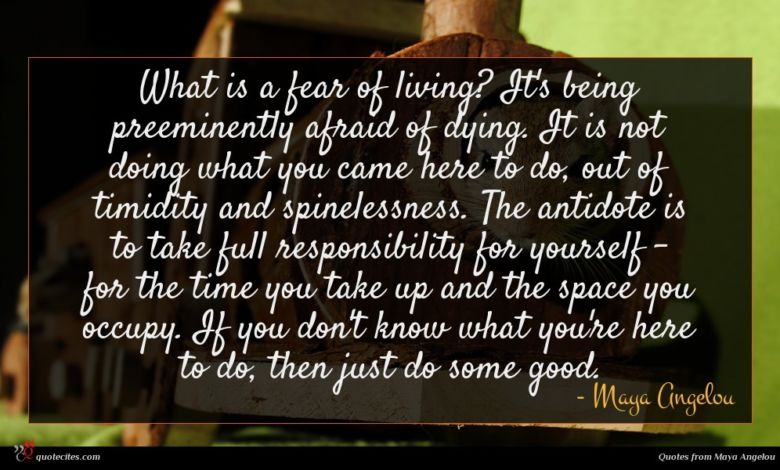 Photo of Maya Angelou quote : What is a fear …