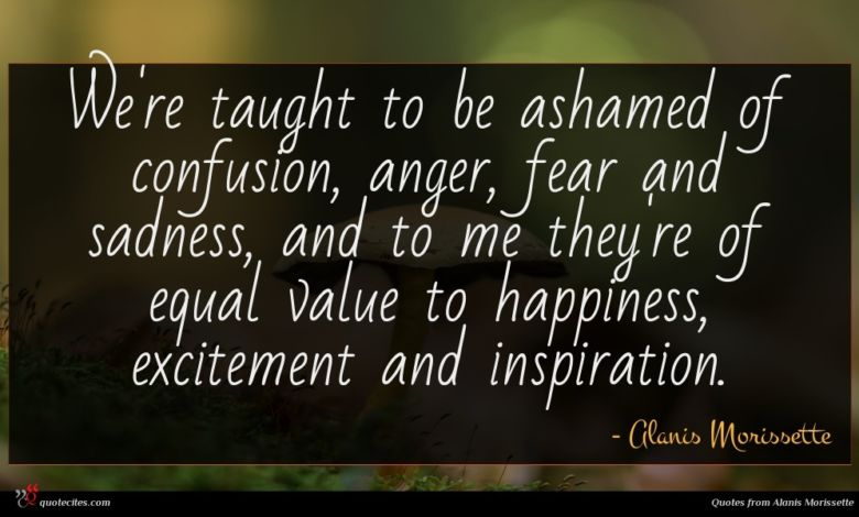 We're taught to be ashamed of confusion, anger, fear and sadness, and to me they're of equal value to happiness, excitement and inspiration.