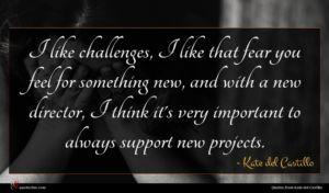 Kate del Castillo quote : I like challenges I ...