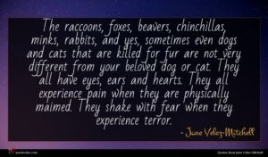 Jane Velez-Mitchell quote : The raccoons foxes beavers ...