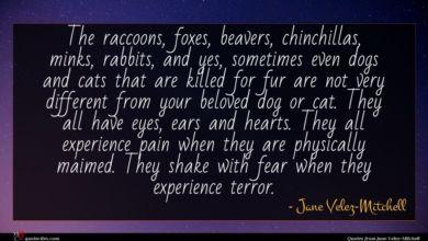 Photo of Jane Velez-Mitchell quote : The raccoons foxes beavers …