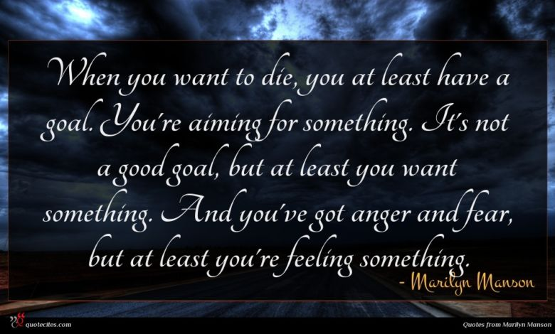 When you want to die, you at least have a goal. You're aiming for something. It's not a good goal, but at least you want something. And you've got anger and fear, but at least you're feeling something.