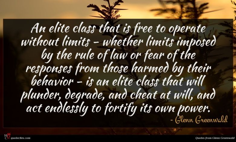 An elite class that is free to operate without limits - whether limits imposed by the rule of law or fear of the responses from those harmed by their behavior - is an elite class that will plunder, degrade, and cheat at will, and act endlessly to fortify its own power.