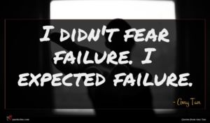 Amy Tan quote : I didn't fear failure ...