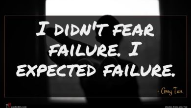 Photo of Amy Tan quote : I didn't fear failure …
