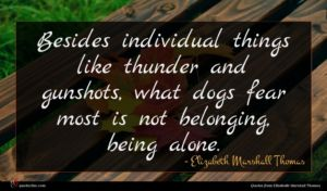 Elizabeth Marshall Thomas quote : Besides individual things like ...