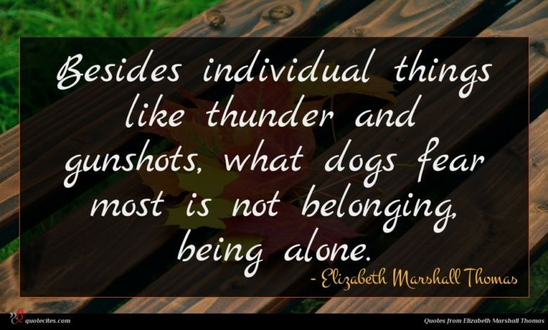 Photo of Elizabeth Marshall Thomas quote : Besides individual things like …