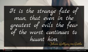 Johann Wolfgang von Goethe quote : It is the strange ...