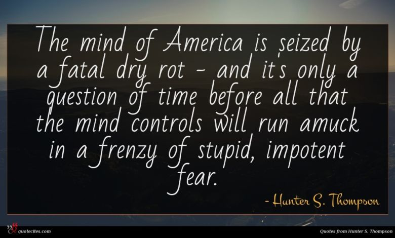 The mind of America is seized by a fatal dry rot - and it's only a question of time before all that the mind controls will run amuck in a frenzy of stupid, impotent fear.