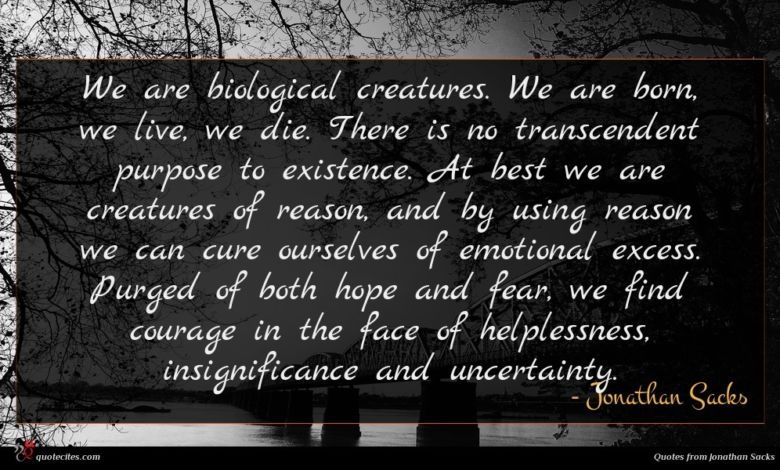 We are biological creatures. We are born, we live, we die. There is no transcendent purpose to existence. At best we are creatures of reason, and by using reason we can cure ourselves of emotional excess. Purged of both hope and fear, we find courage in the face of helplessness, insignificance and uncertainty.