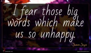 James Joyce quote : I fear those big ...