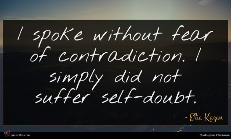 I spoke without fear of contradiction. I simply did not suffer self-doubt.