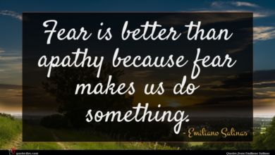 Photo of Emiliano Salinas quote : Fear is better than …