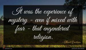 Albert Einstein quote : It was the experience ...