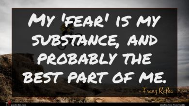 Photo of Franz Kafka quote : My 'fear' is my …