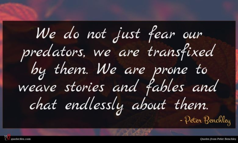 We do not just fear our predators, we are transfixed by them. We are prone to weave stories and fables and chat endlessly about them.