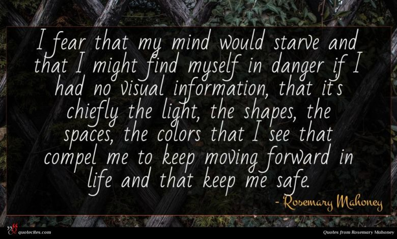 I fear that my mind would starve and that I might find myself in danger if I had no visual information, that it's chiefly the light, the shapes, the spaces, the colors that I see that compel me to keep moving forward in life and that keep me safe.