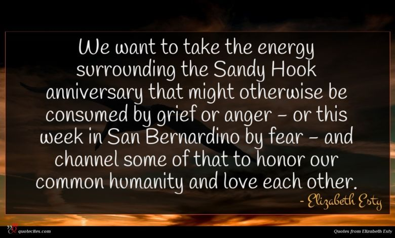 We want to take the energy surrounding the Sandy Hook anniversary that might otherwise be consumed by grief or anger - or this week in San Bernardino by fear - and channel some of that to honor our common humanity and love each other.