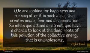 Nhat Hanh quote : We are looking for ...