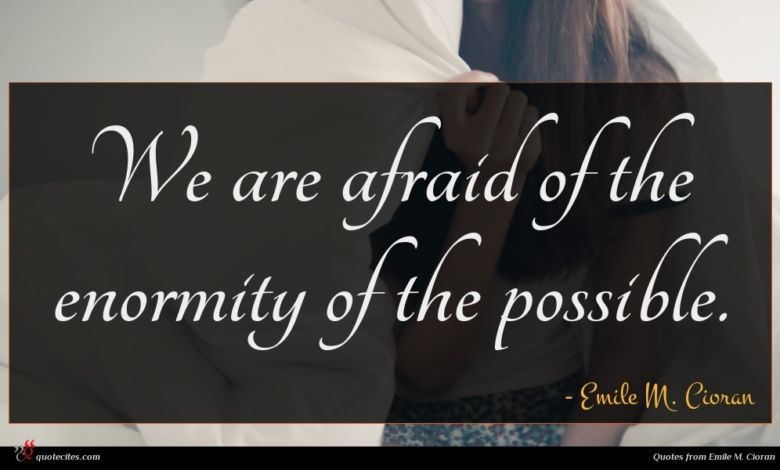 We are afraid of the enormity of the possible.